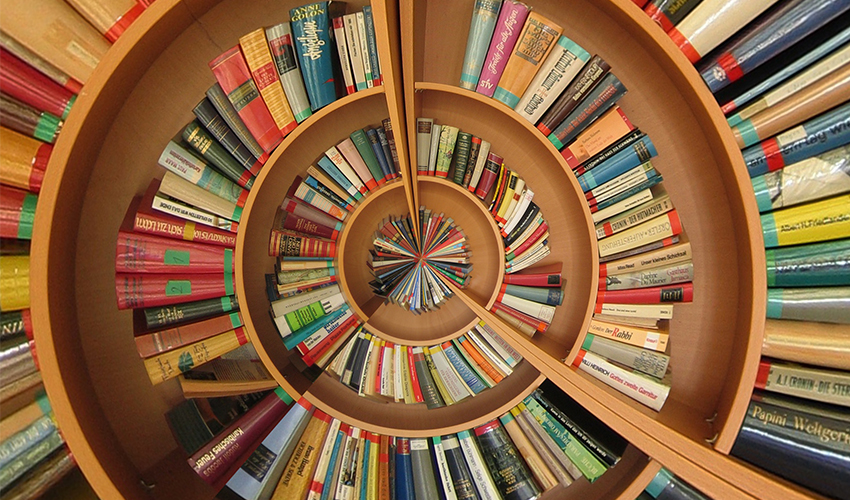 books-employment-laws
